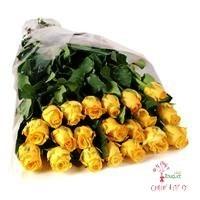 630ef00d018b9daa4ecf24c36158ec51396202977