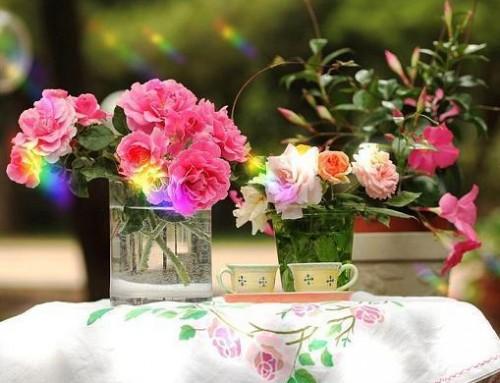 بالصور 8 طرق للحفاظ على زهور الربيع أطول فترة ممكنة