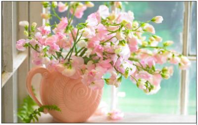 طرق العانية بالزهور والورود