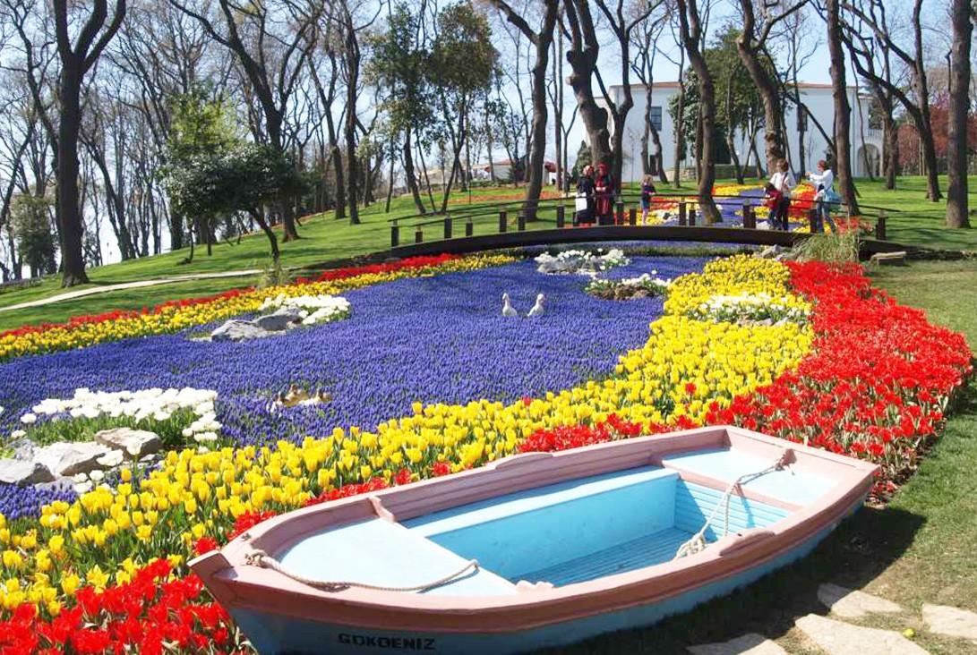tulip-festival-istanbul