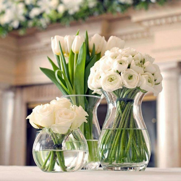 023681c2e4298e2b17bd18dc925652e3-beautiful-flowers-white-flowers