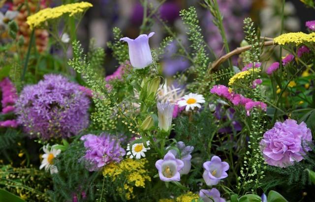 129-230221-britain-chelsea-flower-show-chelsea-blum-5