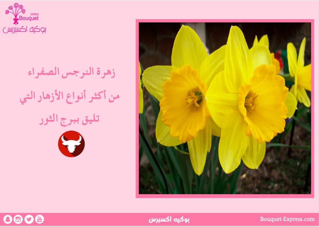 screenshot-2020-04-24-16-29-29
